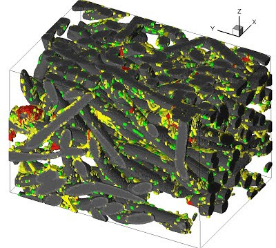 Bone tissue engineering image